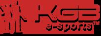 PayneReactor Logo